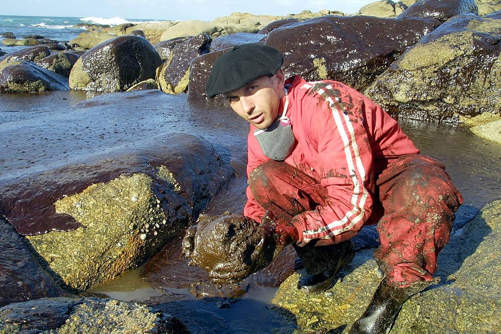 Un voluntario llegado del País Vasco limpiando la playa de A Pedriña, en Muxía <br>José Manuel Casal