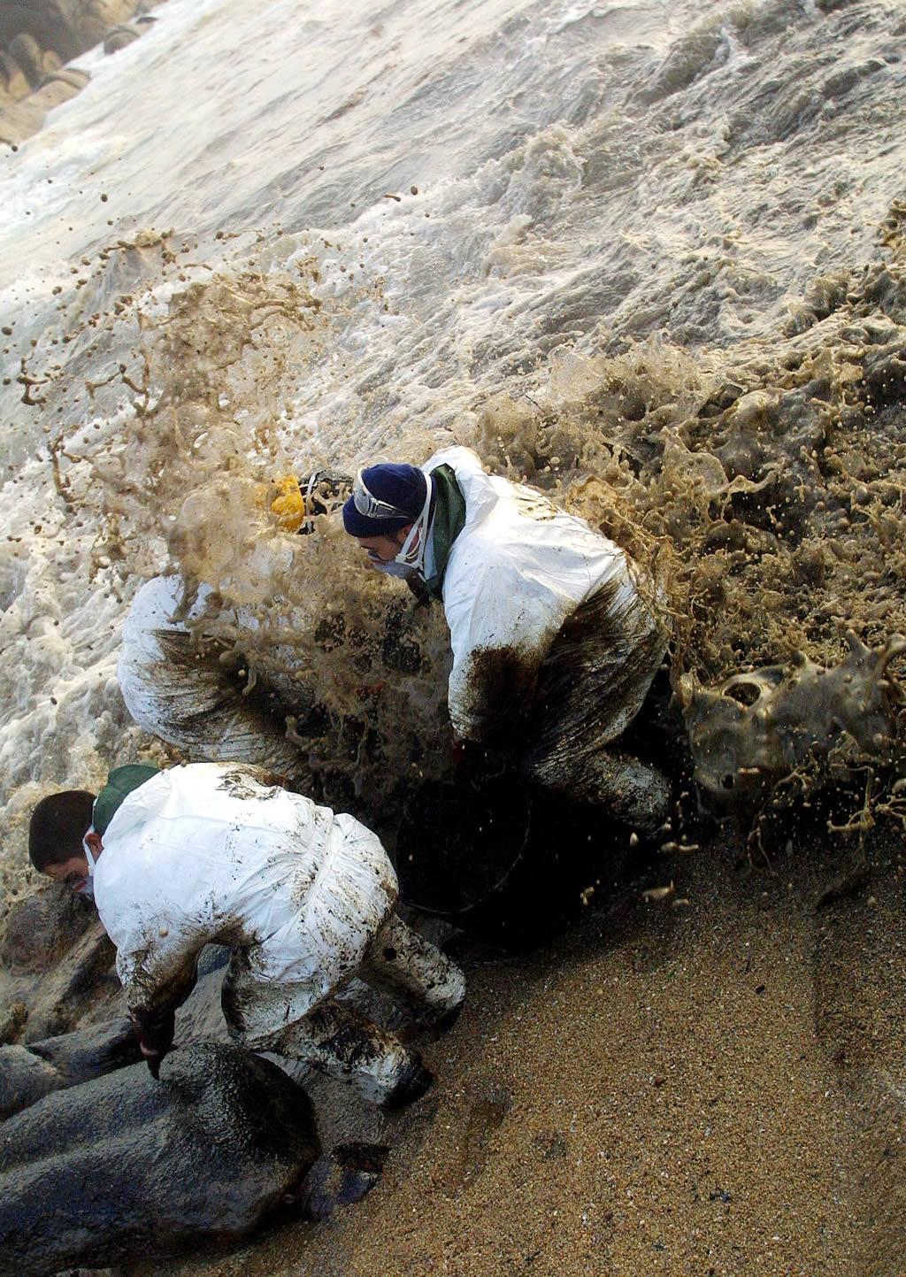 06/12/2002 <br>La lucha del voluntariado es encarnizada. Con Negro es un campo de batalla <br>Vítor Mejuto