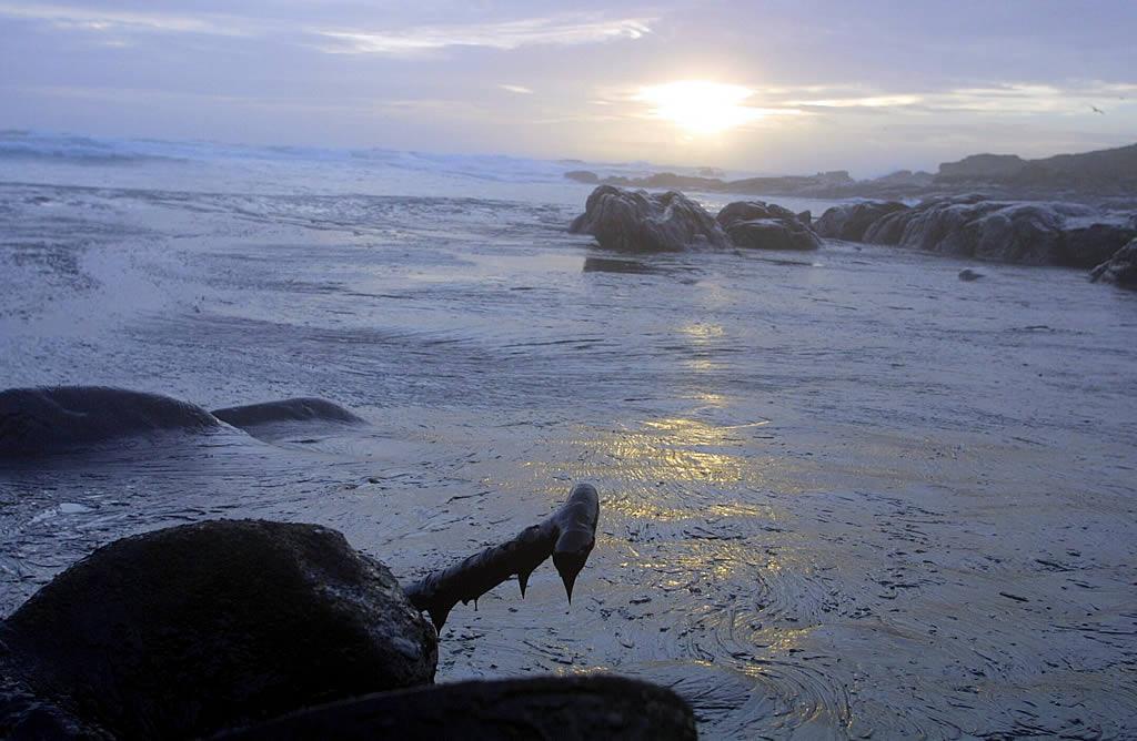 18/12/2002 <br>El fuel inunda el área de O Ximprón (Carnota)  <br>Simón Balvís