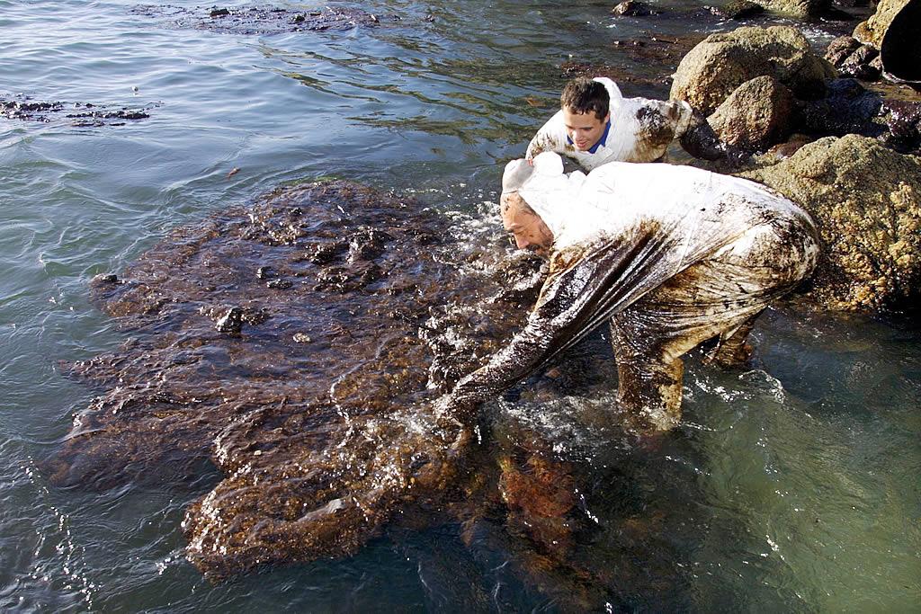 23/01/2003 <br> Los voluntarios se afanan en sacar el chapapote en la cala de Mar de Eiruga, en la zona de O Roncudo, en Corme  <br>José Manuel Casal