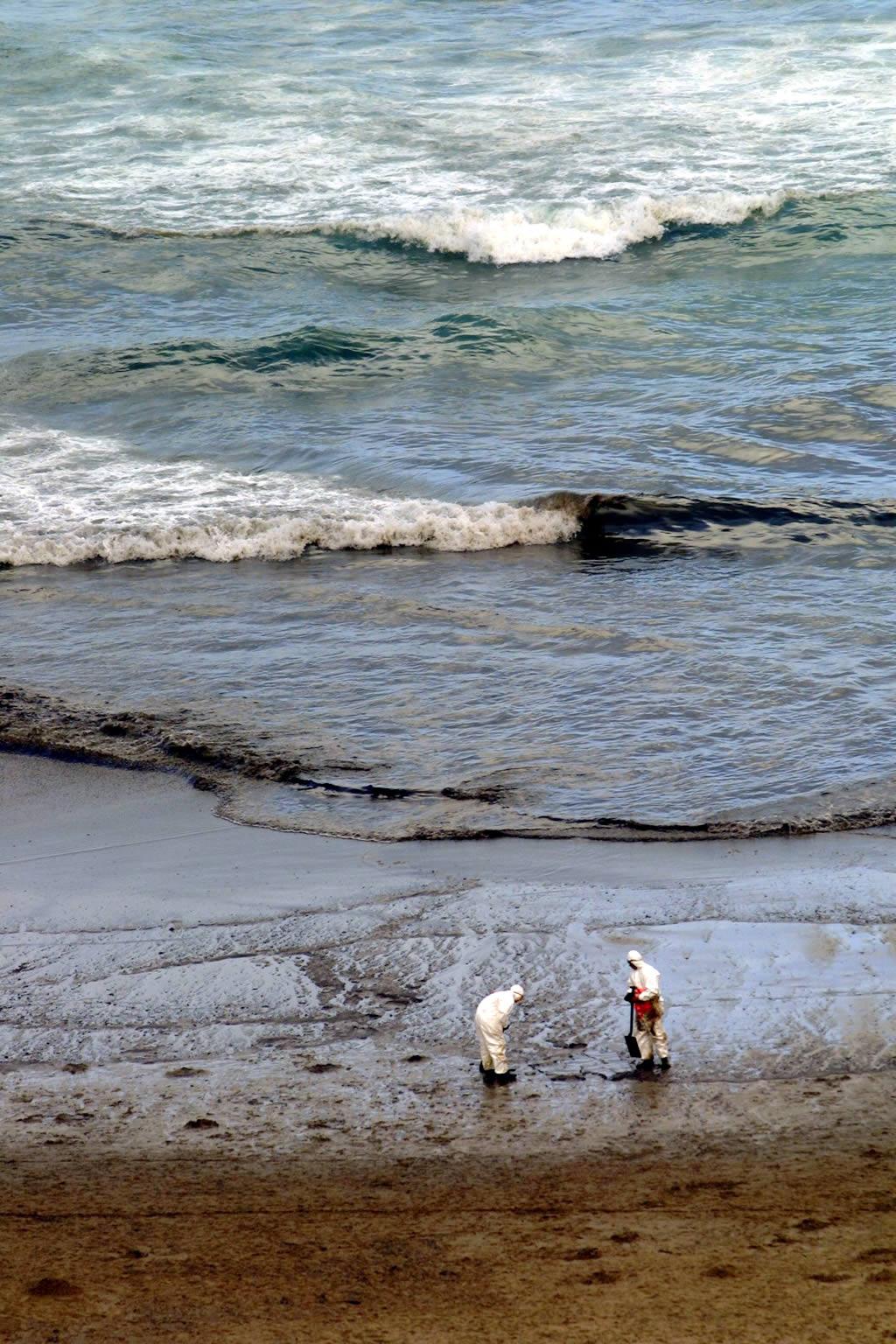 Voluntarios canarios en la playa de  Arnela  <br>José Manuel Casal