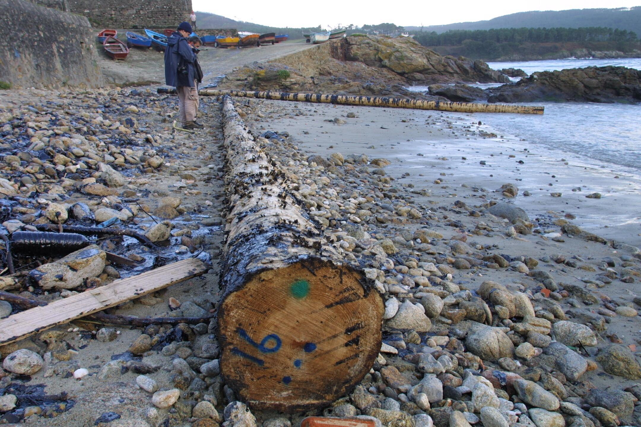 Troncos manchados de fuel en la playa de Sardiñeiro, en Fisterra. <br><b>José Manuel Casal</b>