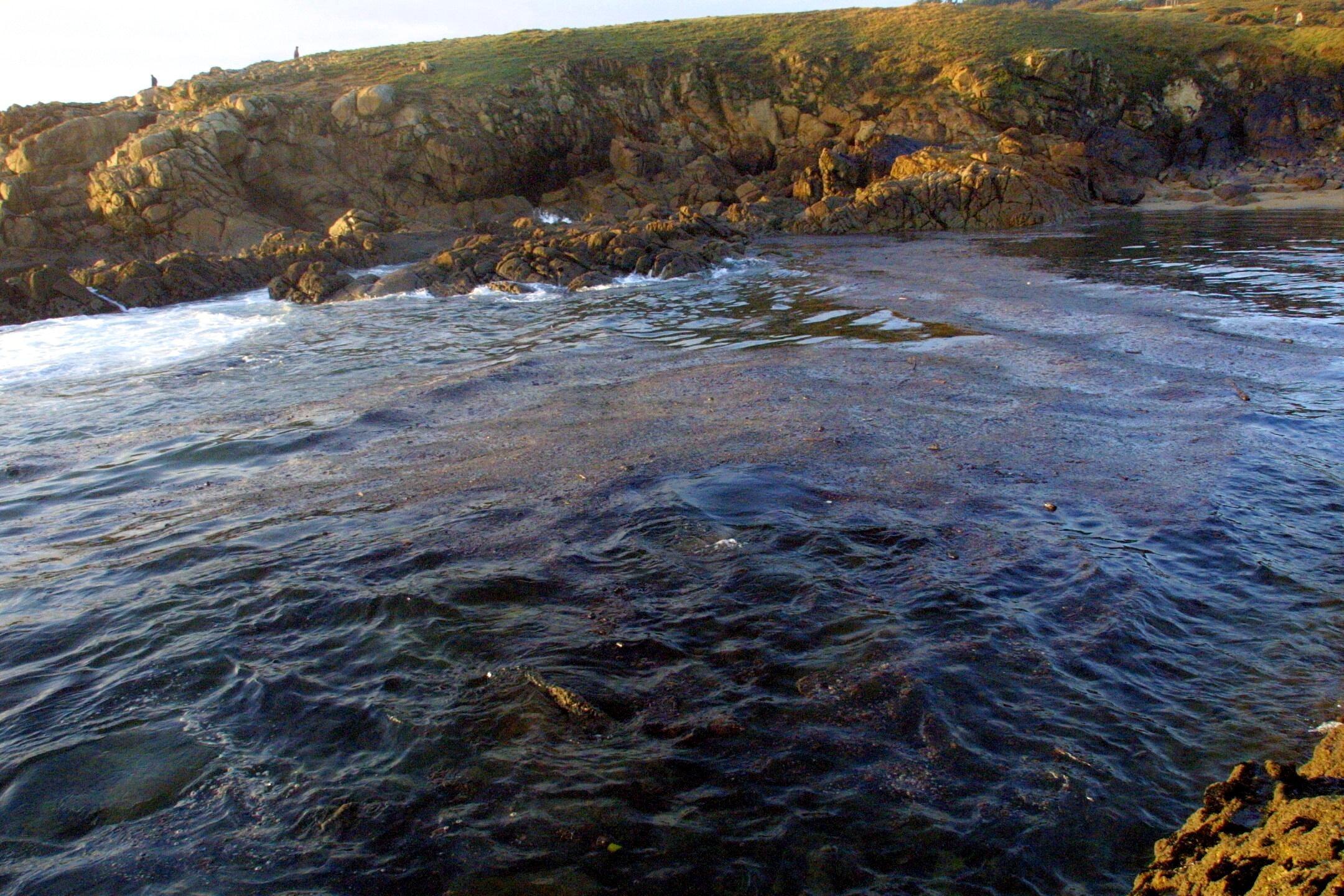 Fuel sobre las aguas de Doniños, en Ferrol. <br><b>Xabier Novo</b>